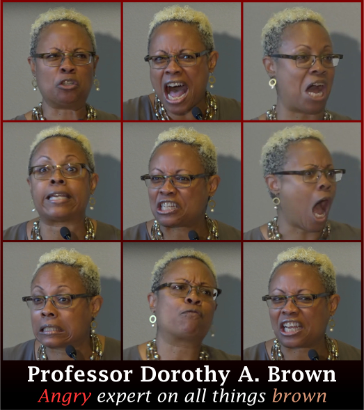 Professor Dorothy A Brown