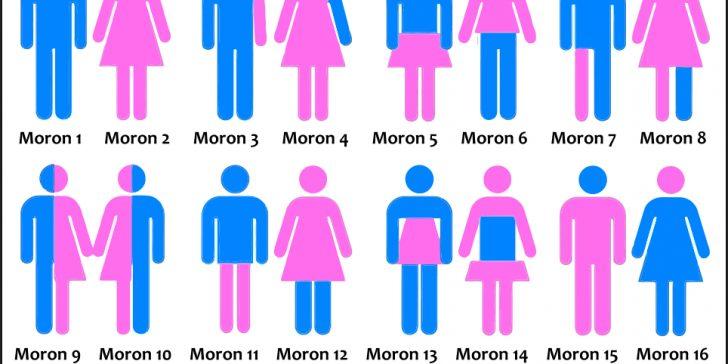 Gender Morons