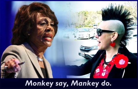 Monkey say, Mankey do.
