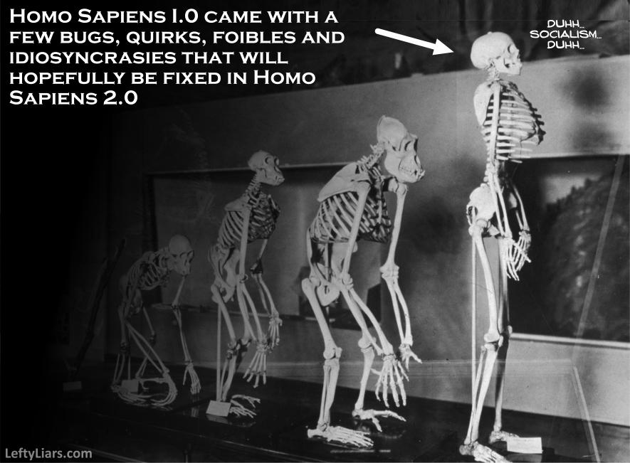 Homo sapiens 1.0
