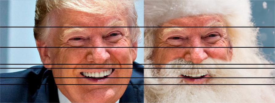 Santa Trump detail