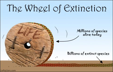 Wheel of Extinction