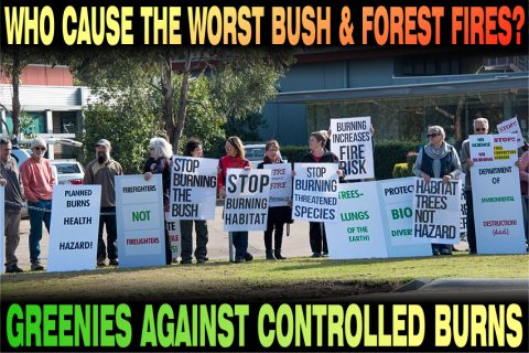 who cause the worst bush and forest fires