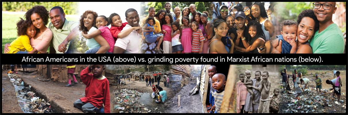 black wealth in USA vs black poverty in Africa