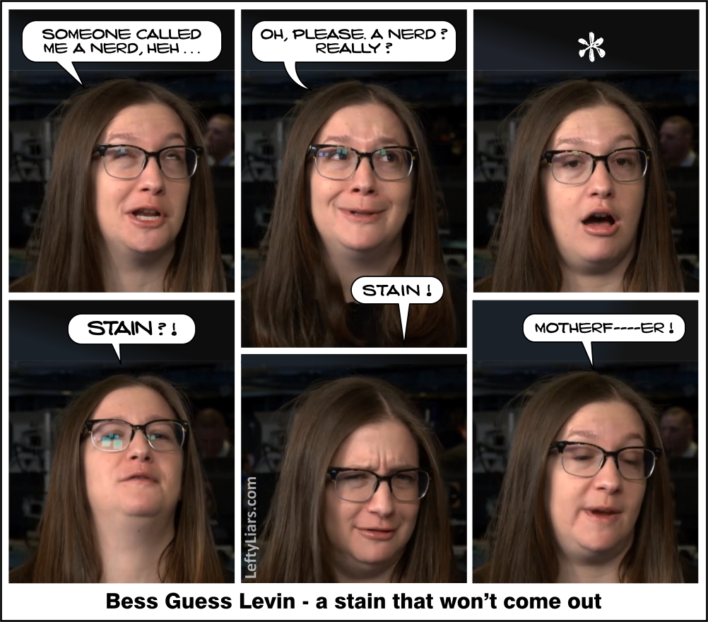 Bess Guess Levin - a stain that won't come out