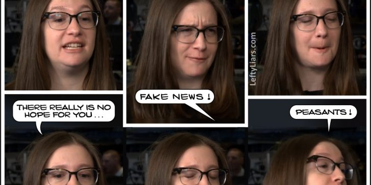 Bess Levin, Queen of Fake News